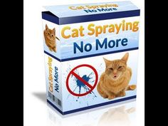 Cat Spraying No More - Best Solution For Cat Spraying Problem